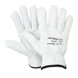 Γάντια Δερμάτινα Arctic